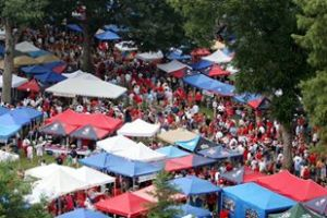 Ole Miss Grove